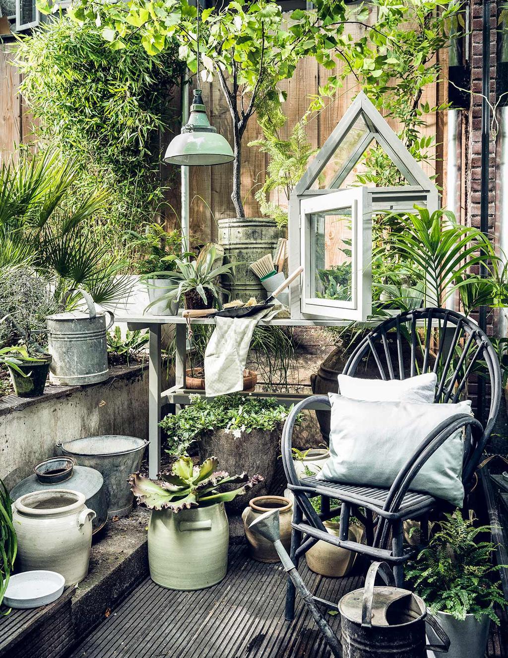 Wat is een botanische tuin?