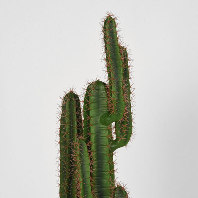 LABEL51 Cactus - Groen - Kunststof - 130 - DS-54.004